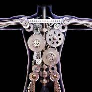 Male human x-ray with internal gears